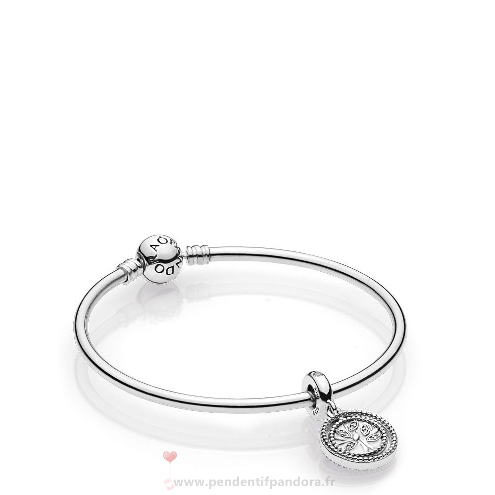 Complet Pandora Family Tree Bangle Gift Set