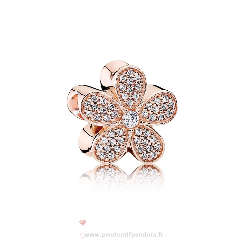 Complet Pandora Pandora Nature Charms Dazzling Daisy Charm Pandora Rose Clear Cz